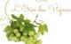 réserver notre gîte L'Orée des vignes