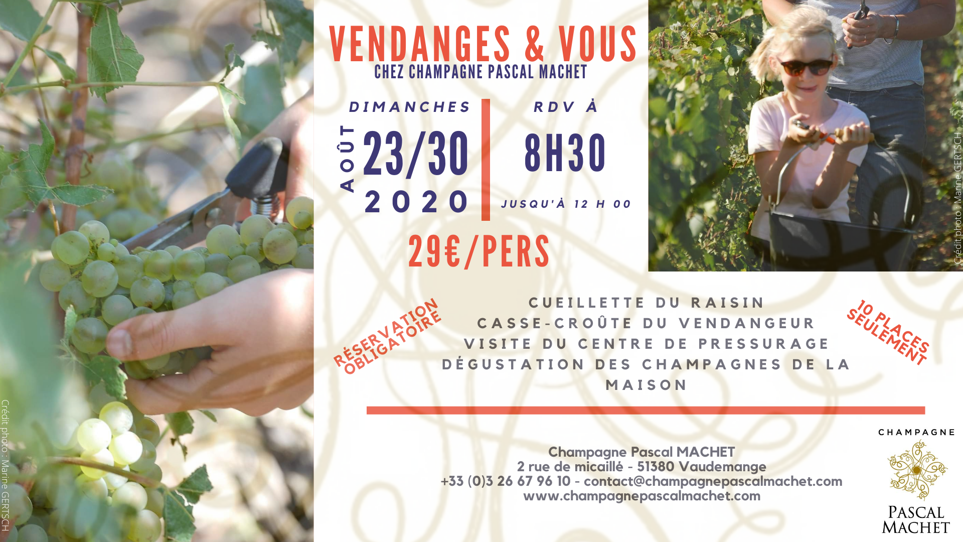 Découverte Vendanges & Vous 2020 en Champagne